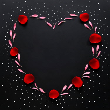 ILINA SIMEONOVA PINK AND RED PETALS IN HEART SHAPE Flowers