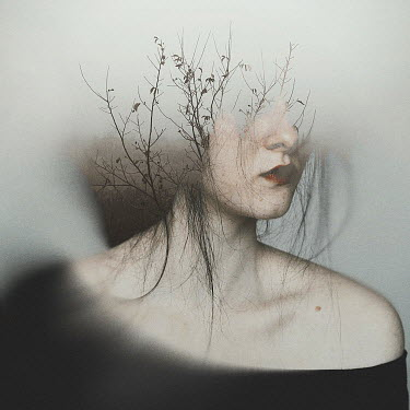 Oana Stoian SURREAL HEAD OF WOMAN WITH BRANCHES Women