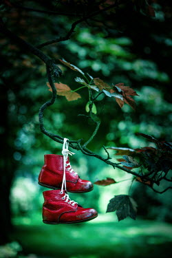 Magdalena Russocka child's red shoes hanging on tree