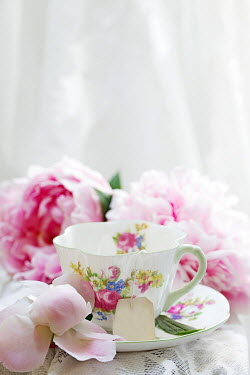Alison Archinuk CHINA TEACUP WITH PINK FLOWERS Flowers