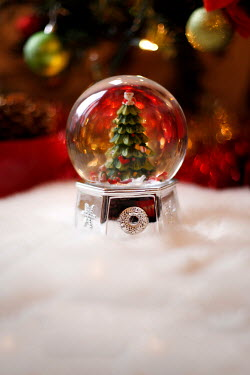 ILINA SIMEONOVA CHRISTMAS TREE IN GLASS BALL Miscellaneous Objects
