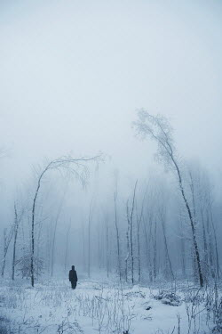 Andrei Cosma Person stood in snow by trees Men