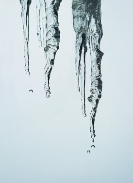 Mark Owen CLOSE UP OF DRIPPING ICICLES Snow/ Ice