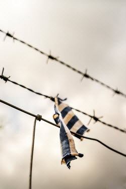 Stephen Mulcahey RIPPED UNIFORM ON PRISON BARBED WIRE Miscellaneous Objects