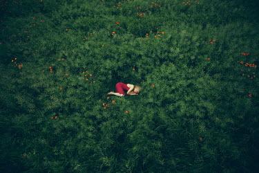 Joanna Czogala WOMAN LYING OUTDOORS IN BUSHES Women
