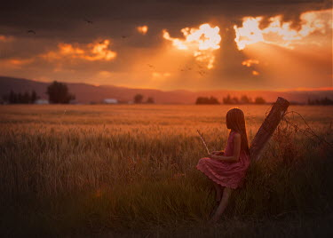 Lisa Holloway GIRL ON FENCE WATCHING SUNSET IN COUNTRYSIDE Children