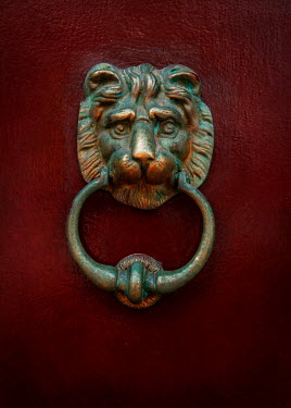 Jaroslaw Blaminsky BRONZE LION HEAD DOOR KNOCKER Building Detail