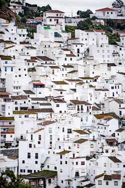 Evelina Kremsdorf TOWN OF WHITE HOUSES ON HILL Specific Cities/Towns