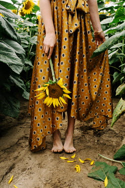 Jovana Rikalo BAREFOOTED WOMAN IN DRESS HOLDING SUNFLOWER IN FIELD Women
