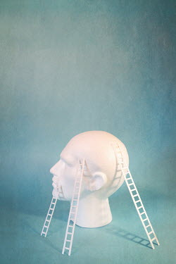 Peter Chadwick MODEL OF HEAD WITH MINIATURE LADDERS Miscellaneous Objects