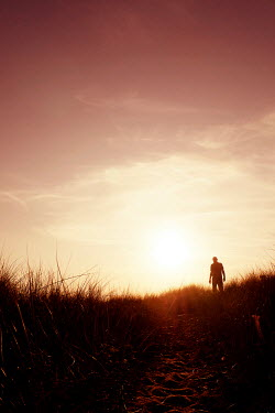 Tim Robinson Man standing in grass at sunset Men
