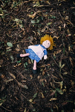 Tim Robinson Discarded doll in forest Miscellaneous Objects