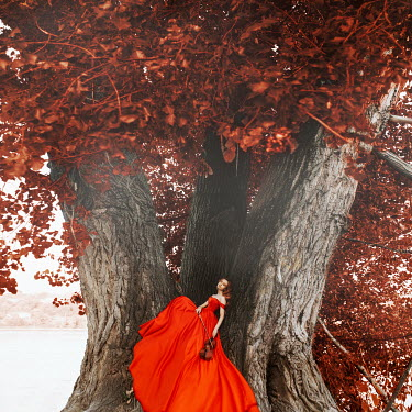 Jovana Rikalo Young woman in red gown sitting in tree with violin Women