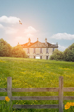 Victoria Davies COUNTRY MANSION AND BUTTERCUP FIELD Houses