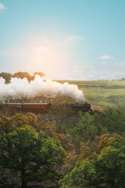 Victoria Davies STEAM TRAIN MOVING THROUGH COUNTRYSIDE Railways/Trains