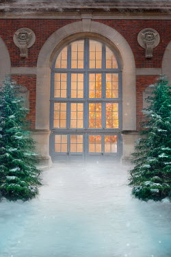 Drunaa WINDOW WITH CHRISTMAS TREE IN GRAND HOUSE Building Detail