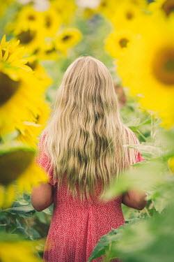 Robin Macmillan BLONDE GIRL IN SUNFLOWER FIELD FROM BEHIND Children