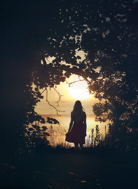 Mark Owen SILHOUETTED GIRL WITH TREES BY SEA AT SUNSET Women