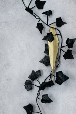 AlcainoCreative Gold feather and black ivy