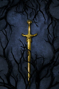 AlcainoCreative Gold sword and black branches