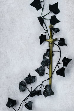 AlcainoCreative Gold sword and black ivy