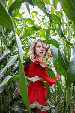 Stephen Carroll women in red dress in field of maize Women