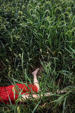 Stephen Carroll Woman in red dress laying amongst greenery Women
