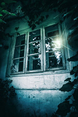 Magdalena Russocka overgrown old window from outside