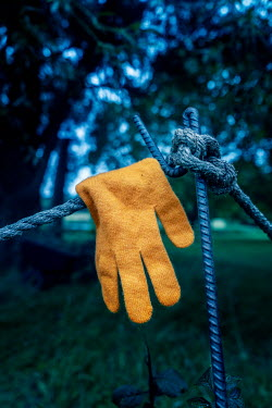 Stephen Mulcahey A discarded yellow glove