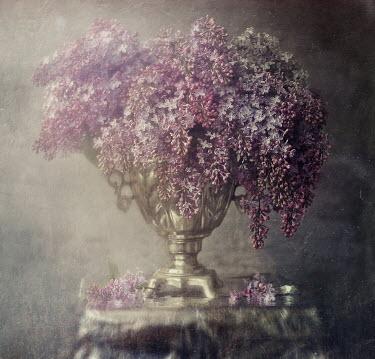 Andreeva Svoboda Lilac in vase