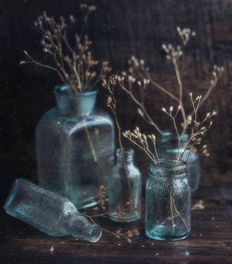 Andreeva Svoboda Twigs in glass bottle