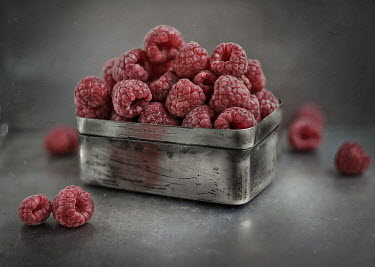 Andreeva Svoboda Raspberries in tin
