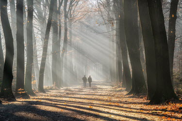 Lars van de Goor COUPLE WALKING IN COUNTRY ROAD IN AUTUMN Couples