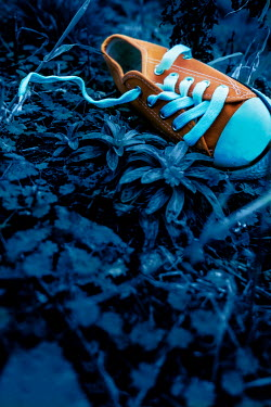 Stephen Mulcahey ORANGE SHOE LYING ON GROUND AT DUSK Miscellaneous Objects