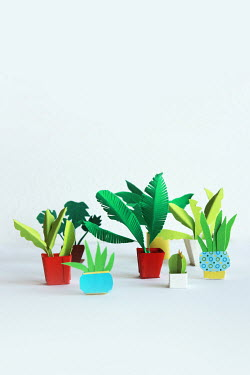 Jasenka Arbanas Paper craft potted plants Miscellaneous Objects