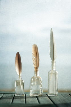 Michael Nelson Feathers in glass bottles