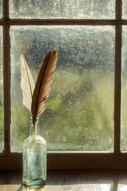 Michael Nelson Feathers in glass bottle on windowsill