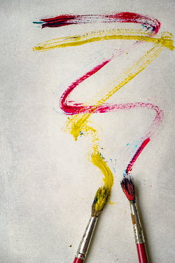Maria Petkova two paintbrushes with smears of paint Miscellaneous Objects