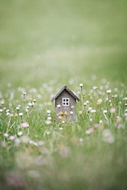 Jaime Brandel Wooden miniature house in grass