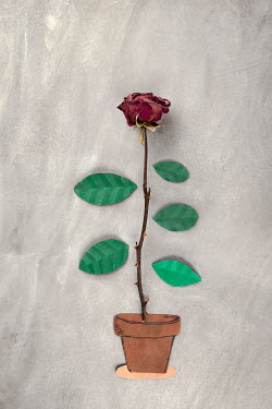 Kelly Sillaste Red rose with paper leaves and flower pot