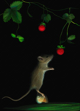 Magdalena Wasiczek MOUSE STANDING ON SNAIL WITH STRAWBERRY BUSH Animals