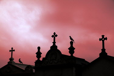 Miguel Sobreira Cemetery Crypts Silhouette