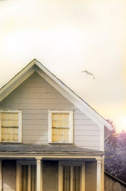 Jill Battaglia Seagull flying over farmhouse