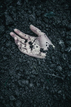 Magdalena Russocka close up of woman's hand sticking out of ground