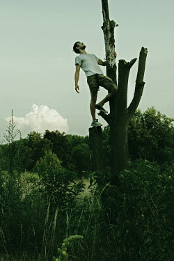 Giovan Battista D'Achille Man climbing tree