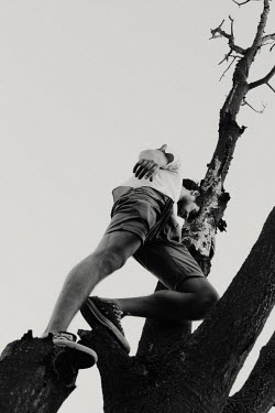 Giovan Battista D'Achille Man climbing tree