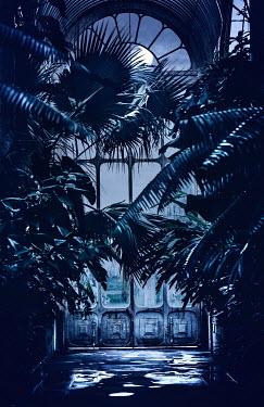 Magdalena Wasiczek Victorian glasshouse in the moon light