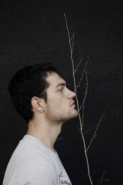 Giovan Battista D'Achille Profile of young man with branch