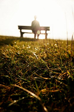 Tim Robinson MAN SITTING ON BENCH IN SUNLIGHT OUTDOORS Men