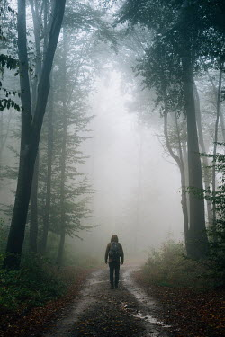 Andrei Cosma Man in hooded jacket walking on path in misty forest